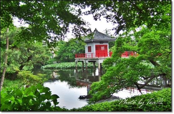 東京世田谷の小京都「烏山寺町」巡りpart1