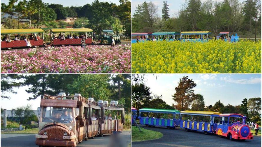 """国営昭和記念公園へのアクセスと散策の""""足""""「レンタサイクル」「パークトレイン」について"""